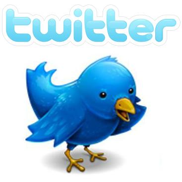twitter logo bird