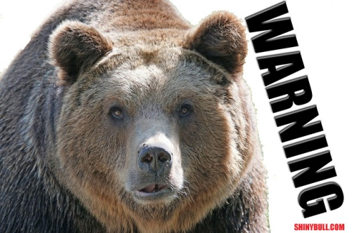 Warningbear